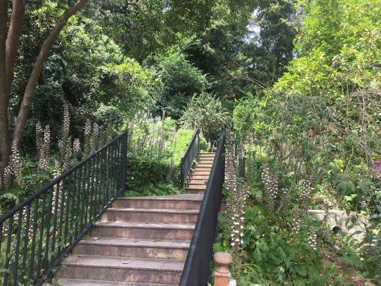 La concepcion jardin botanico historico de malaga for Conception jardin