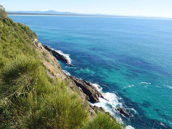 Forster, Australia: Clear water can have whales or porpoises