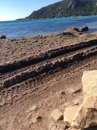 Santa Giulia, Prancis: La plage devant Moby dick