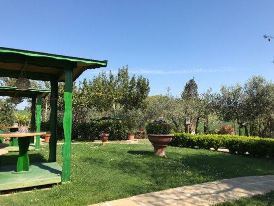 Lorenzana, Italia: photo1.jpg