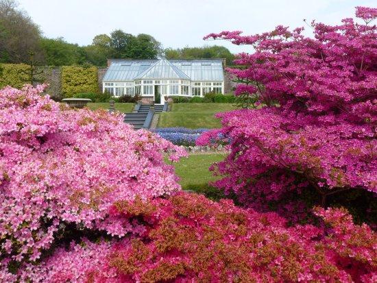 Barnstaple, UK: Formal gardens