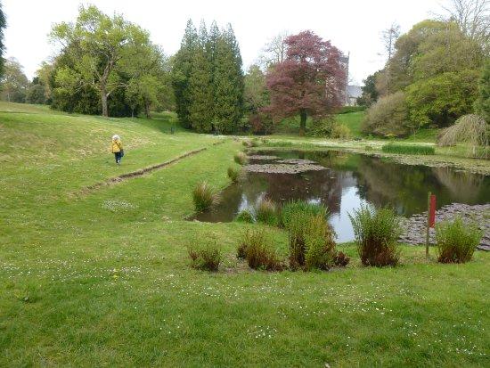 Barnstaple, UK: A walk beside the small lake