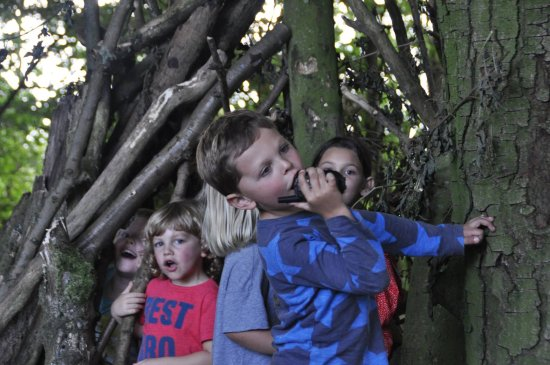 Osbaston, UK: Woods for the children to explore