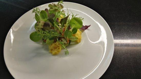 paolo teverini un orto di insalate rare 10 diverse tipologie su zucchine grigliate e