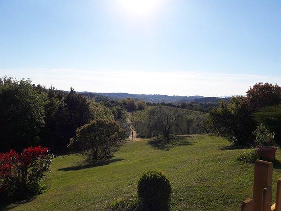 Castelfiorentino, Italy: La Poggiarella