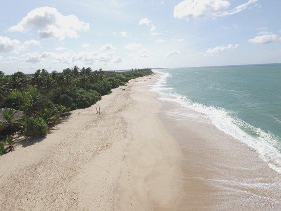 Mangrove Beach Cabanas & Chalets: photo0.jpg