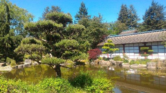 p 20170526 122922 picture of jardin japonais nantes tripadvisor. Black Bedroom Furniture Sets. Home Design Ideas