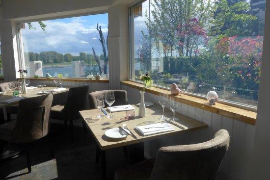 Cocon am Rhein: Unser Ausblick von Innnen