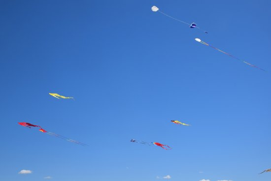 Warnemnde, Jerman: Windy Warnemunde Beach good for Kitesurfing and and Kites Flying