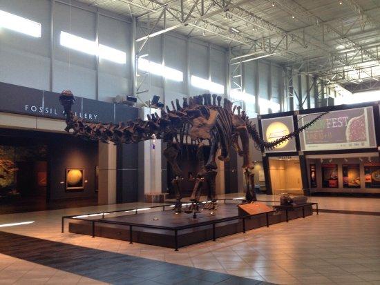 Tellus Science Museum : photo4.jpg