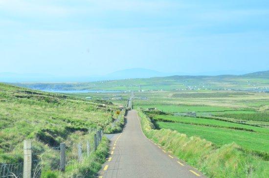 Portmagee, Ireland: Carretera de llegada a los cliffs desde el sur