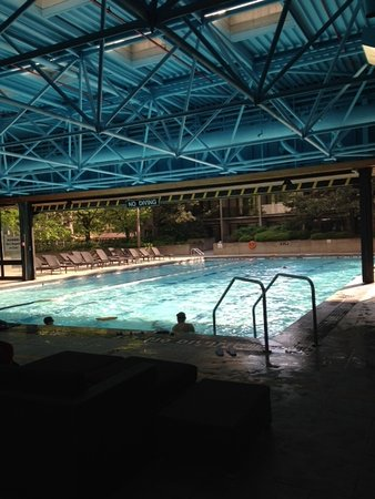 Indoor Outdoor Pool Picture Of Sheraton Centre Toronto Hotel Toronto Tripadvisor
