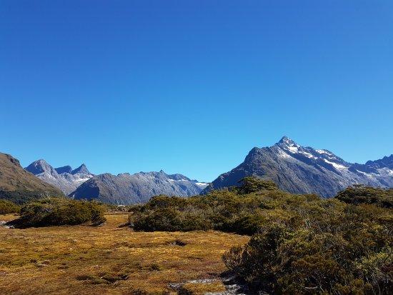 Milford, Новая Зеландия: Plateau