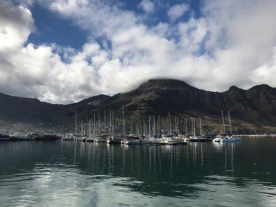 Κόλπος Hout, Νότια Αφρική: photo1.jpg