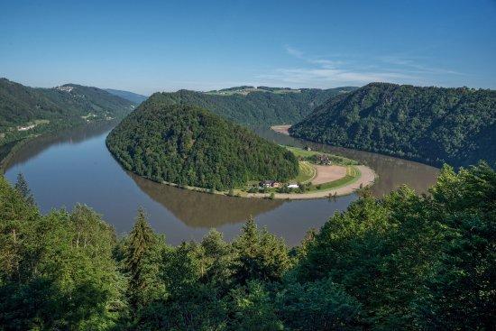 Schlogen, Austria: Diese Aussicht ist nur 30 Minuten Anstieg vom Hotel Donausschlinge ennfernt