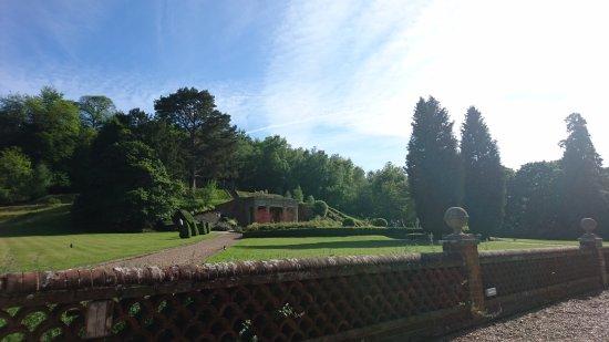 Dorking, UK: DSC_0560_large.jpg