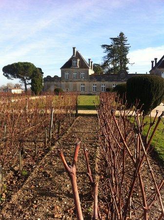Rendez-vous au Chateau: winter time at Chateau de Cerons