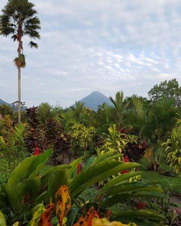 Hotel Rancho Cerro Azul: FB_IMG_1495805138213_large.jpg
