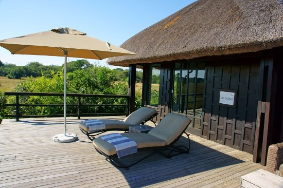 Phinda Private Game Reserve-bild