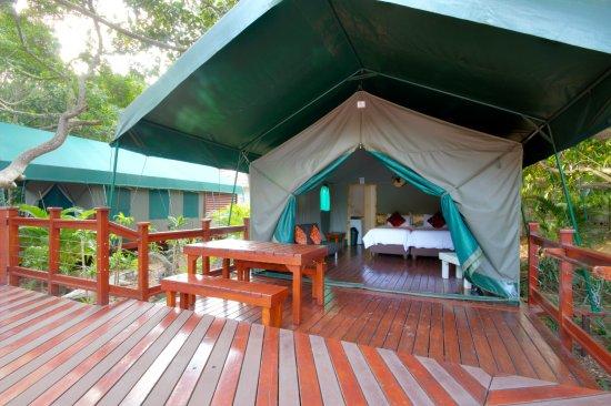 Monzi Safaris Tented Camp