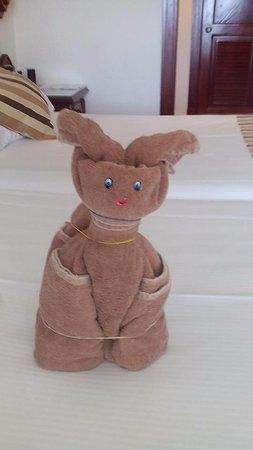 Hotel Riu Vallarta: Towel Art