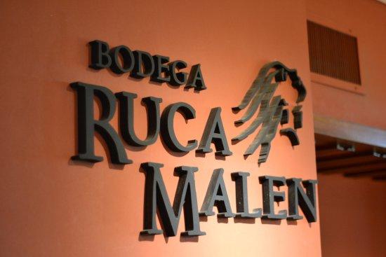 Lujan de Cuyo, Argentina: Recepcion Bodega