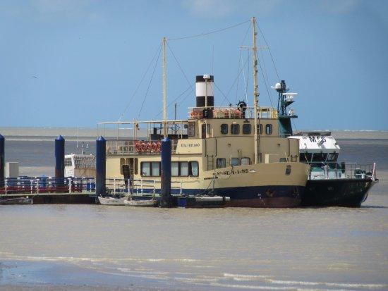 Sanlucar de Barrameda, İspanya: Boat