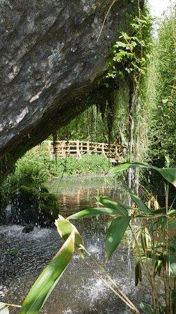 สวนและปราสาทบลาร์นีย์: Beautiful