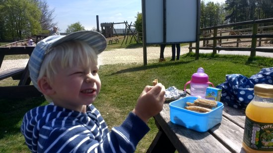 Guiting Power, UK: Family picnic held whilst planning the afternoons fun