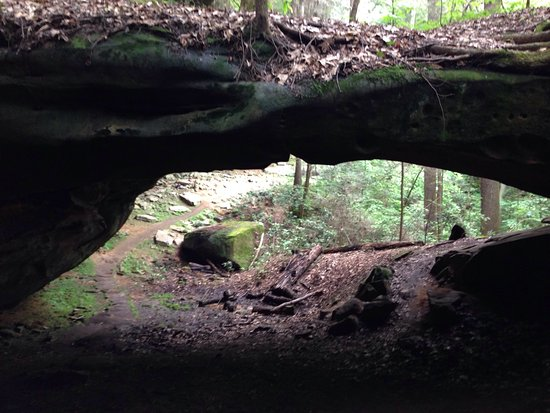 Whitley City, KY: Trail past Yahoo Falls takes you to this unique arch.