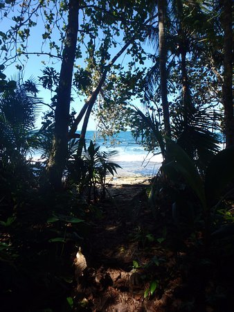 Manzanillo, Kosta Rika: petit chemin