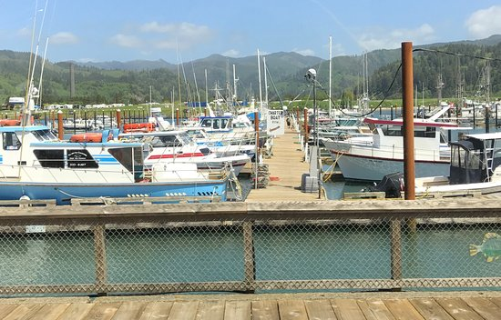 Garibaldi, OR: Yachts Aplenty