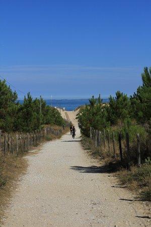 Pistes Cyclables en Gironde