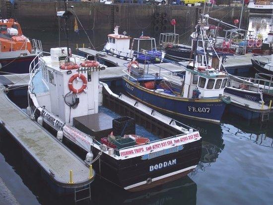 Peterhead, UK: Fraserburgh Marina