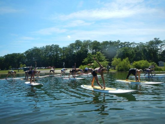Levittown, PA: They offer Stand up Paddle Yoga! You gotta try it!