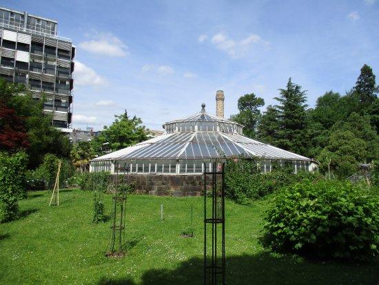Jardin botanique de l 39 universit de strasbourg picture of botanical gardens of strasbourg - Jardin botanique de strasbourg ...
