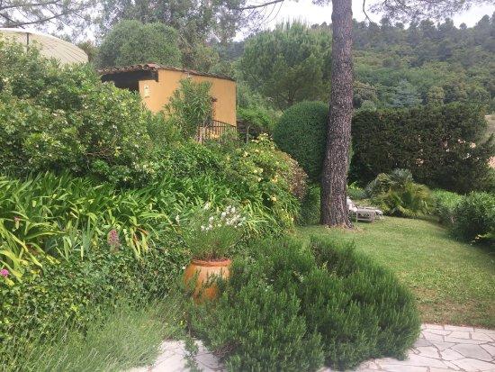 La Colline de Vence : photo3.jpg