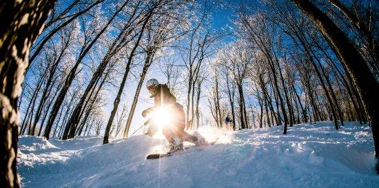 Saint-Faustin-Lac-Carré, Canada: Hébergement en bordure des pistes et de la plage