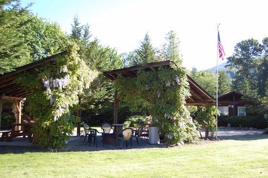Concrete, WA: Picnic shelters at our cabins with Wisteria in bloom