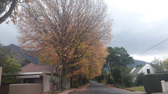 Swellendam, South Africa: 20170524_122619_large.jpg