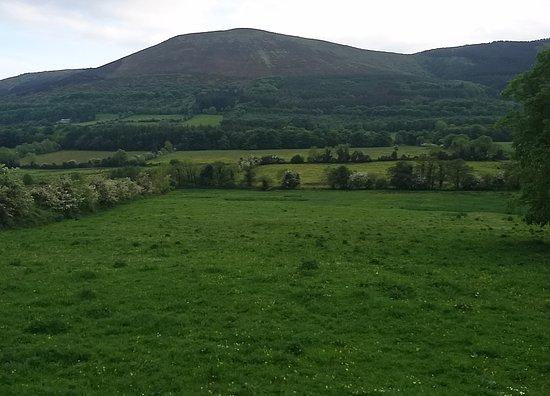 Ardpatrick, Ирландия: 1495565288470_large.jpg