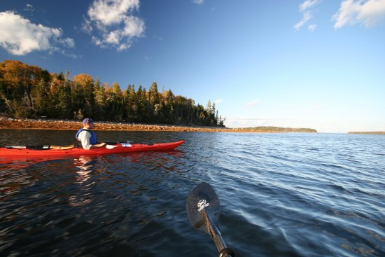 Mahone Bay, Canada: Paddle to local islands that have been protected by the Mahone Island Conservation Association.