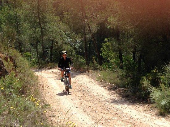 E Bike Tours Tarragona