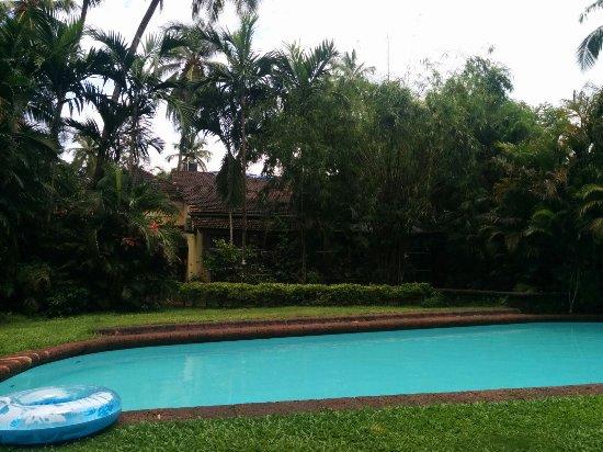 Presa di Goa Country House: Pool