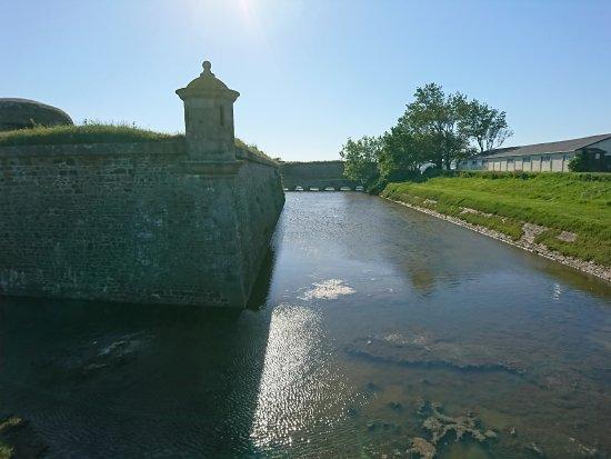 Saint-Vaast-la-Hougue, Frankreich: DSC_0773_large.jpg