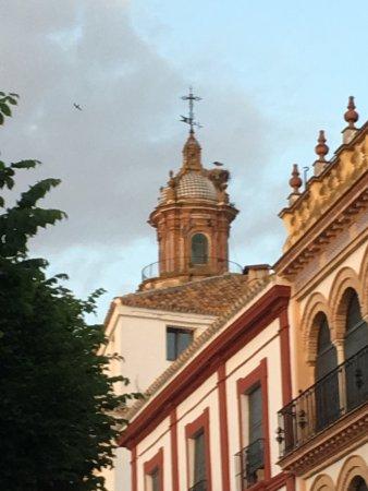 Carmona, Spagna: photo0.jpg