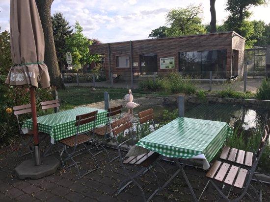 . Franz Ferdinand  Bochum   Restaurant Reviews  Phone Number   Photos