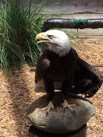 Cheney, KS: photo1.jpg