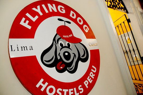 Flying Dog Backpackers Hostel-bild