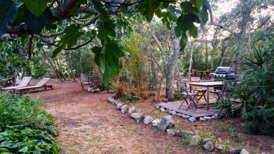 Espaces Detente Amenages Dans Le Jardin Barbecue Weber